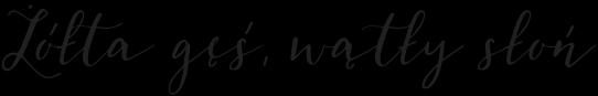 fonty-polskie-znaki